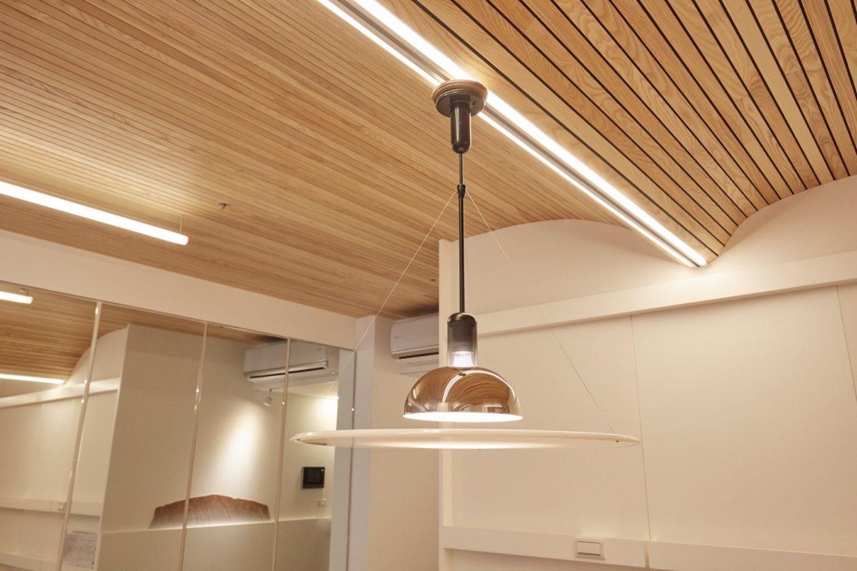 餐吊燈,卡西納,改造燈具